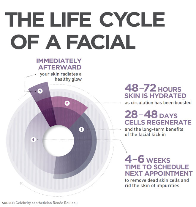 Life Cycle of a Facial